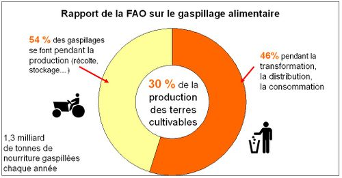 Gaspillage alimentaire FAO 2013 h.jpg