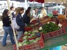 887ef458d10 Comment créer un marché de producteurs bio et locaux — Ekopedia